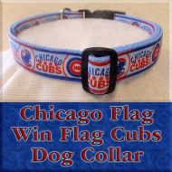 Chicago Cubs Win Flag Chicago Flag Designer Dog Collar Product Image No2