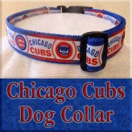 Chicago Cubs Designer Dog Collar Product Image No1