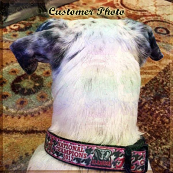 University of Alabama National Football Champions Pink Houndstooth Designer Dog Collar Product Image No2