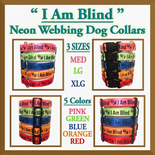 I Am Blind Neon Polyester Webbing Designer Dog Collar Product Image No6