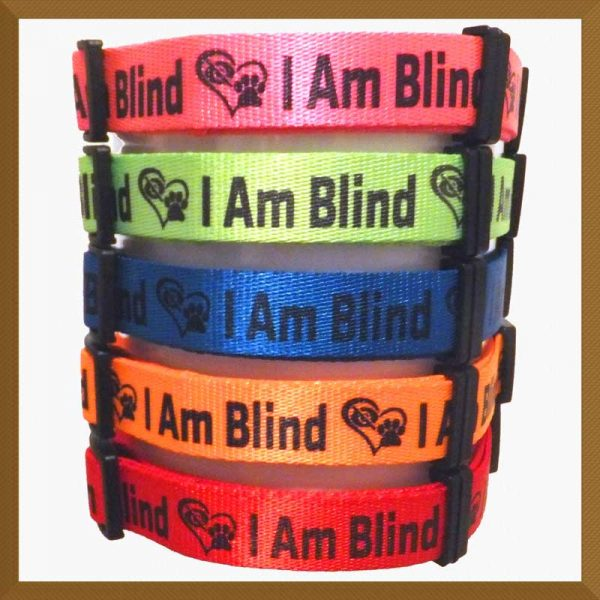 I Am Blind Neon Polyester Webbing Designer Dog Collar Product Image No4