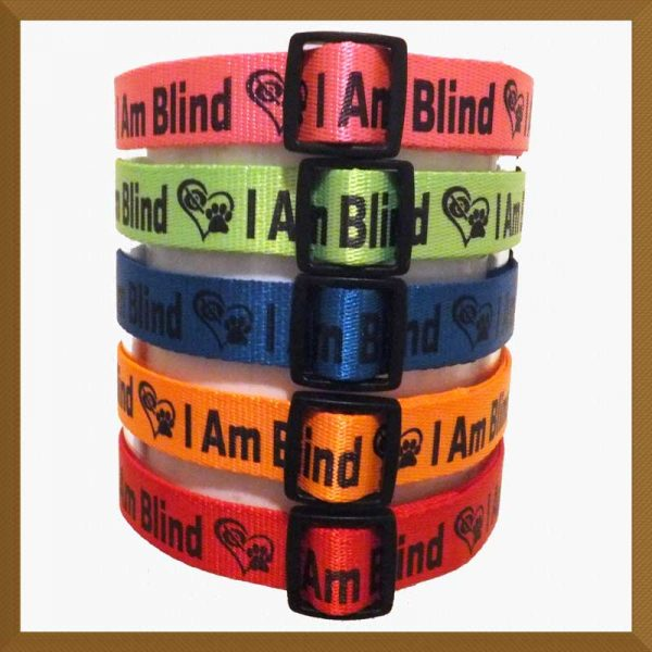 I Am Blind Neon Polyester Webbing Designer Dog Collar Product Image No3