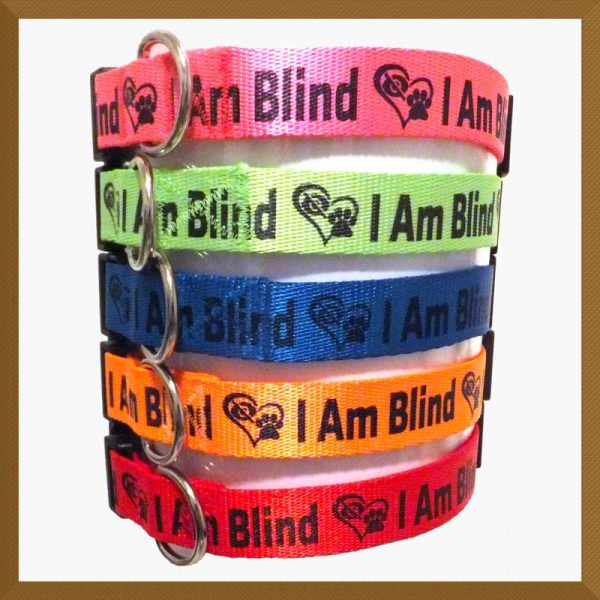 I Am Blind Neon Polyester Webbing Designer Dog Collar Product Image No2