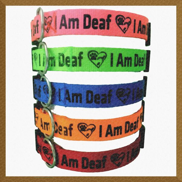 I Am Deaf Neon Polyester Webbing Designer Dog Collar Product Image No1