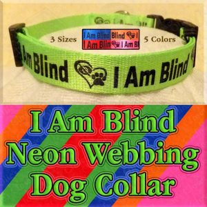 I Am Blind Neon Polyester Webbing Designer Dog Collar Product Image No1
