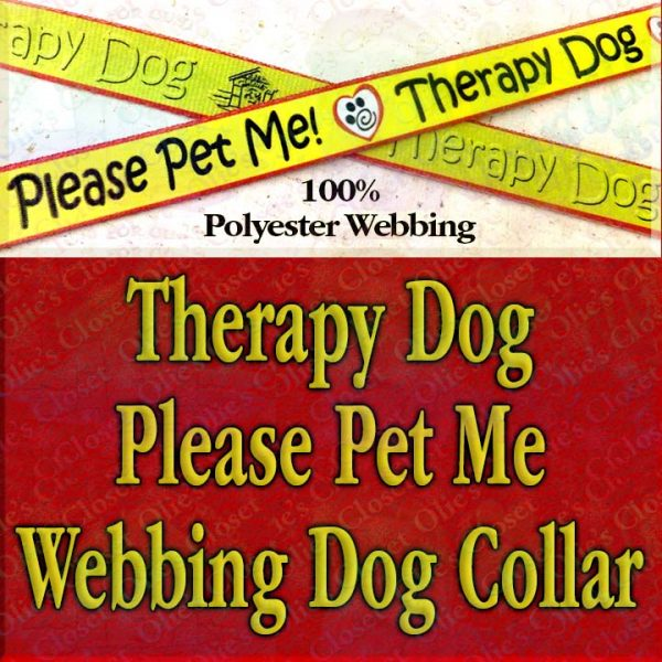 Therapy Dog Please Pet Me Misfit Paws Polyester Webbing Designer Dog Collar Product Image No2