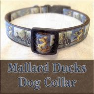 Mallard Ducks Designer Dog Collar Product Image No1