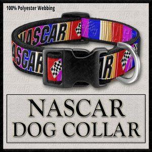 NASCAR PINK Designer Dog Collar Product Image No1