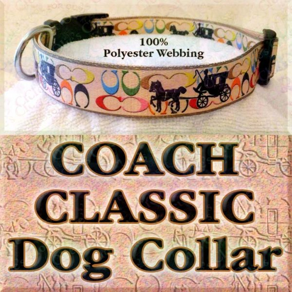 Classic Coach and Carriage Designer Polyester Webbing Dog Collar Product Image No3