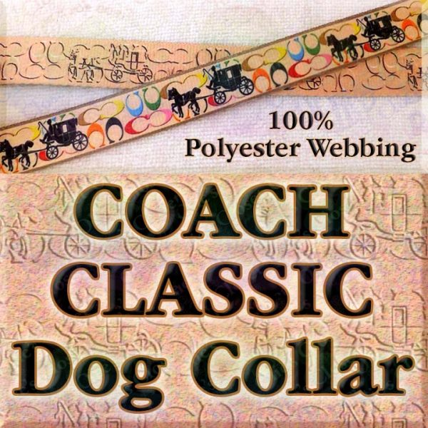 Classic Coach and Carriage Designer Polyester Webbing Dog Collar Product Image No2