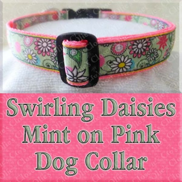Swirling Mint Green Daisies on Pink Dog Collar Product Image No1