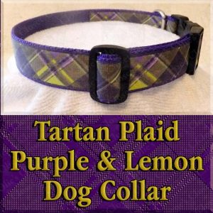 Tartan Plaid Lemon Yellow and Purple Designer Dog Collar Product Image No1