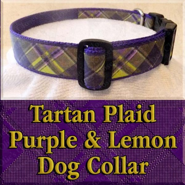 Tartan Plaid Lemon Yellow and Purple Designer Dog Collar Product Image No1