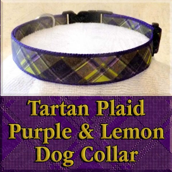 Tartan Plaid Lemon Yellow and Purple Designer Dog Collar Product Image No2