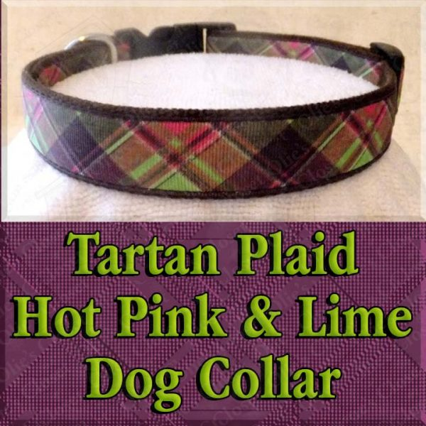 Tartan Plaid Hot Pink and Lime Green Designer Dog Collar Product Image No2