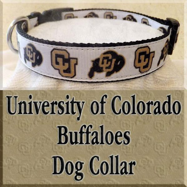 University of Colorado Buffaloes Designer Dog Collar Product Image No2