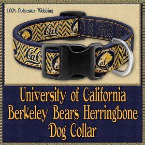 University of California Berkeley Bears Designer Dog Collar Product Image No1
