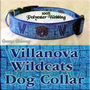 Villanova University Wildcats Polyester Webbing Designer Dog Collar Product Image No3