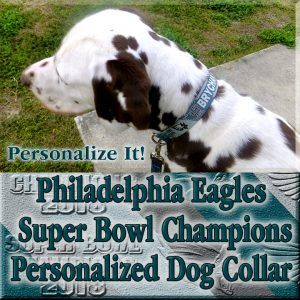 Philadelphia Eagles Personalized Super Bowl Champions Diagonal Team Colors 100% Polyester Webbing Dog Collar Product Image No2