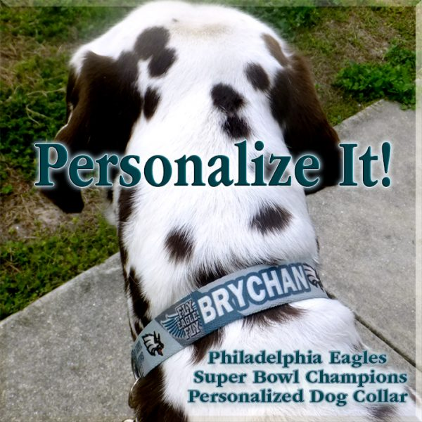 Philadelphia Eagles Personalized Super Bowl Champions Diagonal Team Colors 100% Polyester Webbing Dog Collar Product Image No1