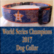 Astros 2017 World Series Champions Navy Glitter Product Image No1