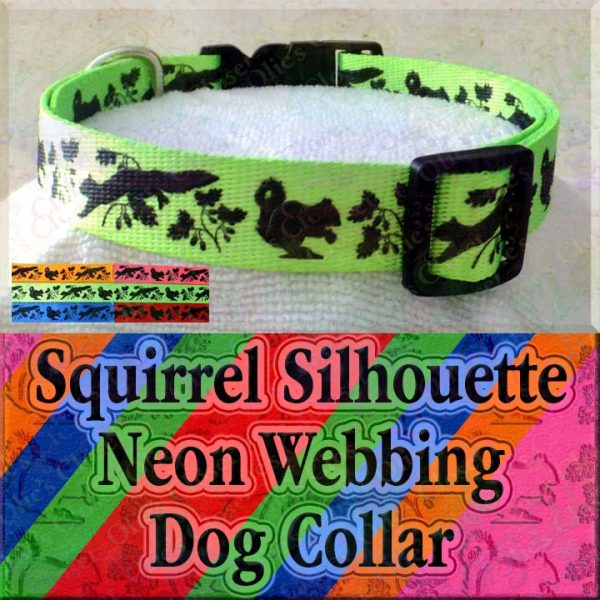 Squirrel and Nuts Silhouette Neon 5 Color Choices Designer Polyester Webbing Dog Collar Product Image No1