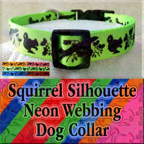Squirrel and Nuts Silhouette Neon 5 Color Choices Designer Polyester Webbing Dog Collar Product Image No3