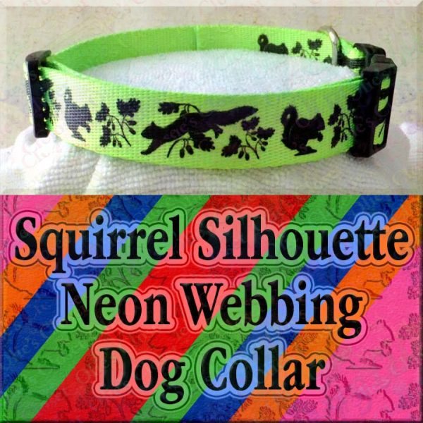 Squirrel and Nuts Silhouette Neon 5 Color Choices Designer Polyester Webbing Dog Collar Product Image No4