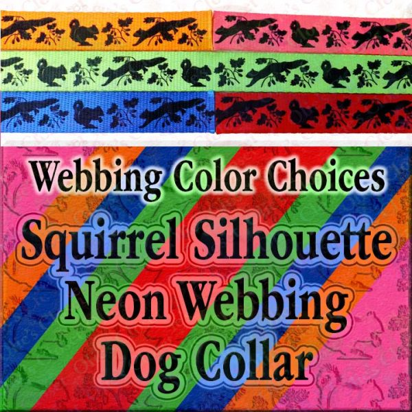 Squirrel and Nuts Silhouette Neon 5 Color Webbing Choice Samples Designer Polyester Webbing Dog Collar Product Image No5
