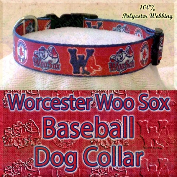 Worcester Woo Sox Baseball Designer Polyester Webbing Dog Collar Product Image No4