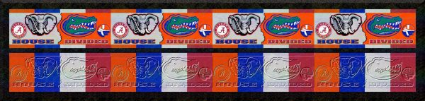 Visual Display FINAL UF vs AL House Divided Dog Collar Product Image
