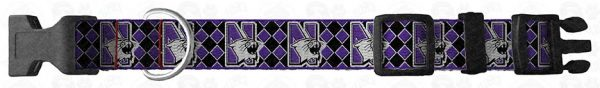 Northwestern Wildcats Argyle Dog Collar Design Display Product Image No2