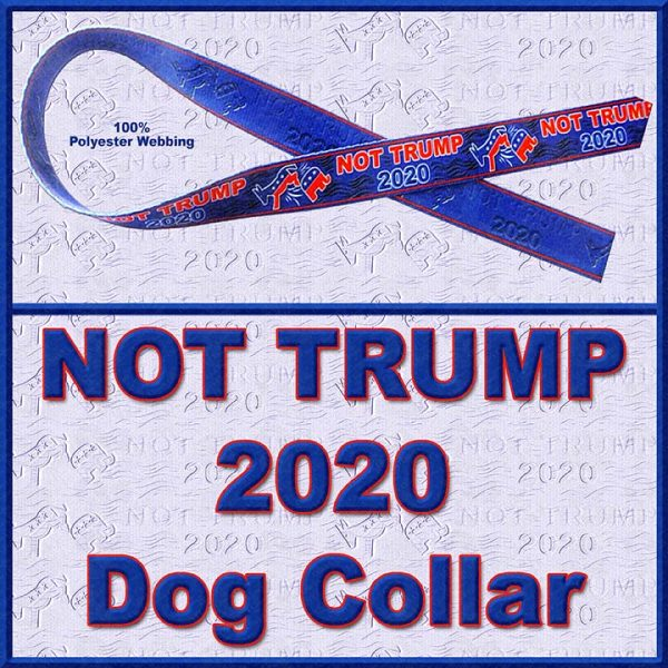 NOT TRUMP for President 2020 Dog Collar Product Image No1