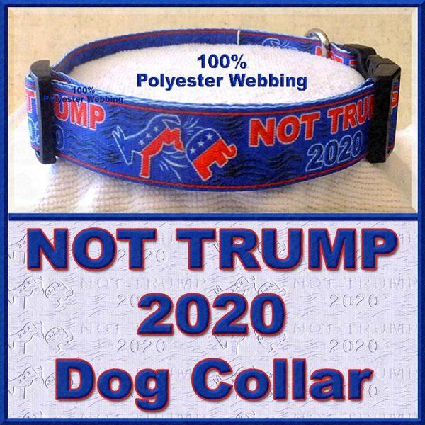 NOT TRUMP for President 2020 Dog Collar Product Image No4