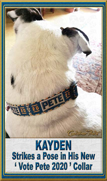 Pete Buttigieg for President 2020 Customer Photo Dog Collar Product Image No5