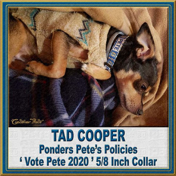Pete Buttigieg for President 2020 Customer Photo Dog Collar Product Image No6