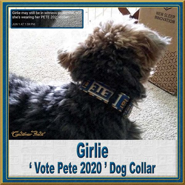 Pete Buttigieg for President 2020 Customer Photo Dog Collar Product Image No8