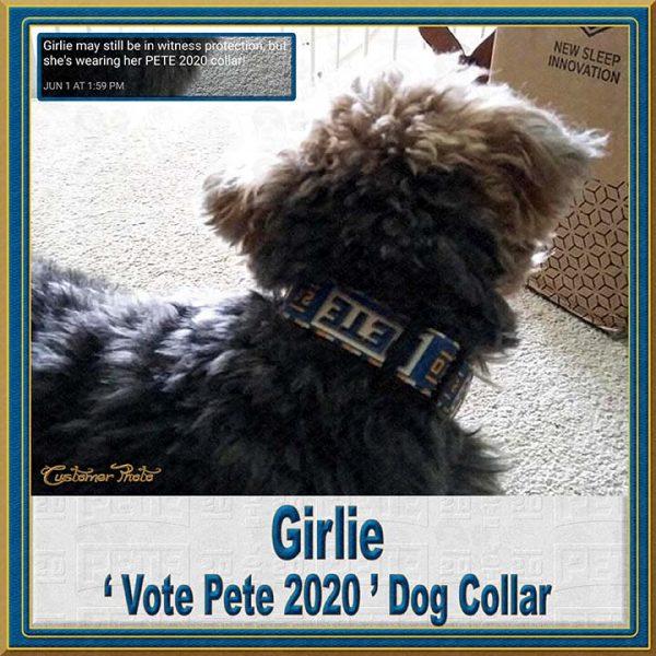 Pete Buttigieg for President 2020 Customer Photo Dog Collar Product Image No8