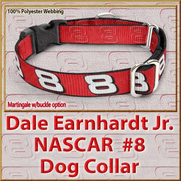 Dale Earnhardt Jr Fan NASCAR Number 8 Polyester Webbing Dog Collar Product Image No2