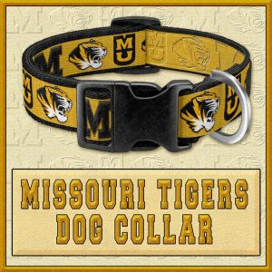 Missouri Tigers Designer Dog Collar Product Image No1