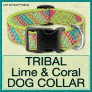 Tribal Lime Coral Designer Dog Collar Product Image No1
