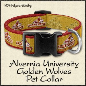 Alvernia University Golden Wolves Pet Collar Product Image No1