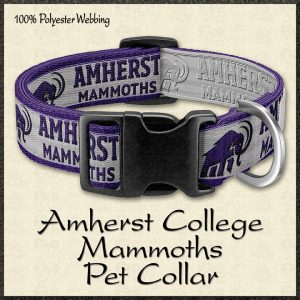 Amherst College Mammoths Pet Collar Product Image No1