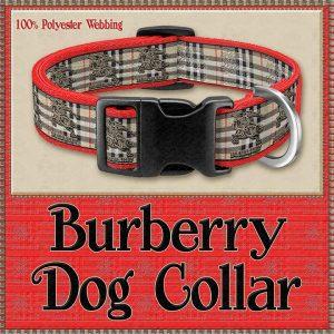 Burberry Designer Dog Collar Product Image No1